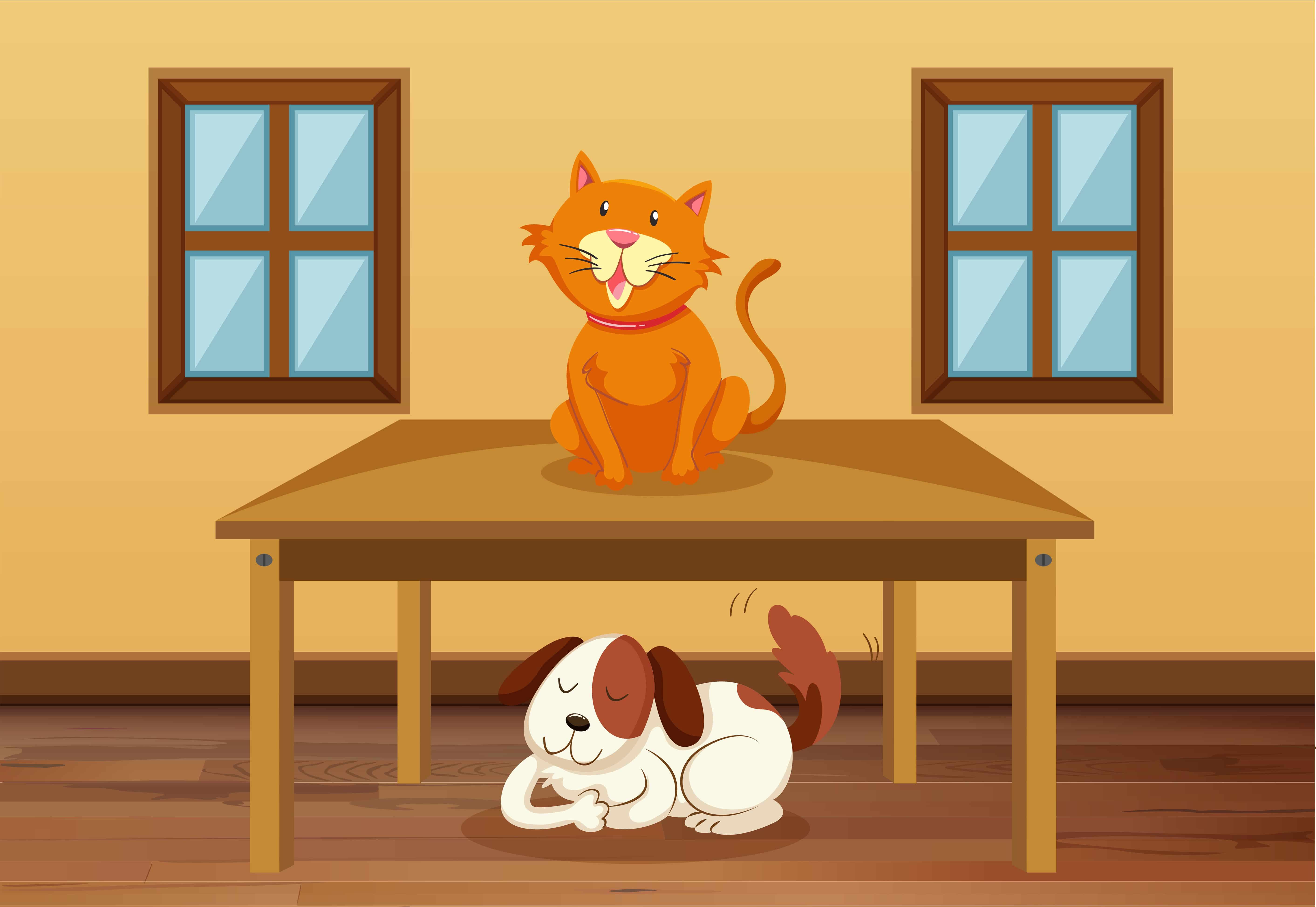 Mudanzas al Reino Unido – Mascotas